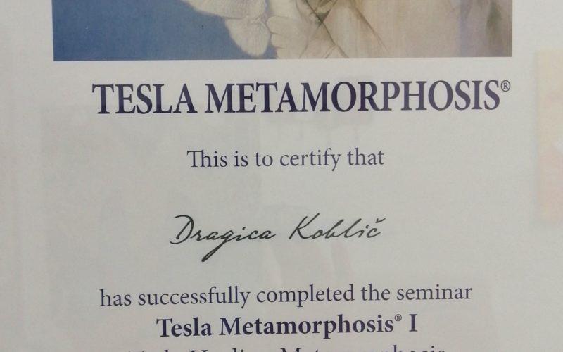 tesla-diploma-I