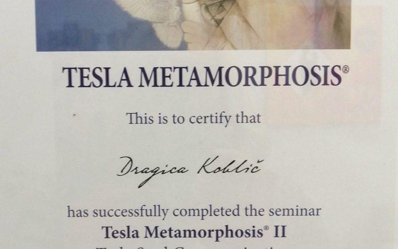 tesla-diploma-II